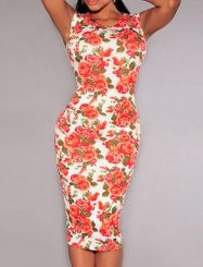 Was and Now - Fashion Clothing - 2 Color  Floral Printed Round Neck   Bodycon-dress