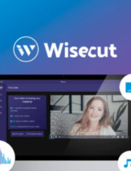 WAS AND NOW - Wisecut Lifetime Deal for $69 WAS $273.00